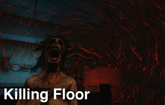 Co optimus review killing floor co op review for Killing floor zombies
